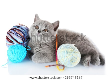 Cute gray kitten with skein of colorful thread isolated on white - stock photo