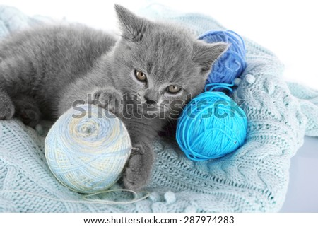 Cute gray kitten with skeins of thread on warm plaid, closeup - stock photo