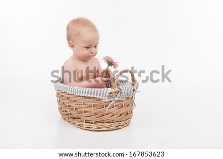 Cute little baby with beautiful flower sitting in basket. Full length isolated over white background  - stock photo