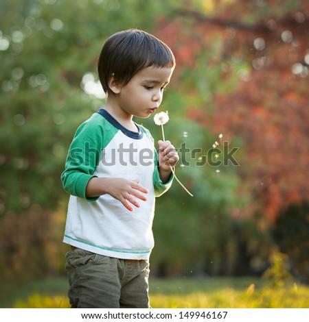 Cute little boy blowing a dandelion flower. - stock photo