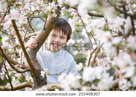 Cute little boy in blooming apple garden on beautiful spring day - stock photo