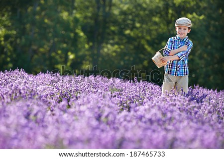Cute little boy with basket in lavender field on beautiful summer day - stock photo