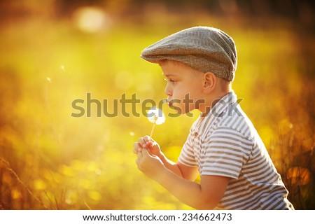 cute little boy with dandelions - stock photo