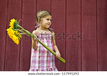 Cute little farm girl holding bouquet of sunflowers in front of red barn - stock photo