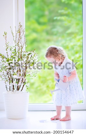 Cute little girl, funny toddler with curly hair wearing a blue festive dress, watering flowers - cherry blossom tree, spilling water on the floor at home in a white sunny living room with window - stock photo