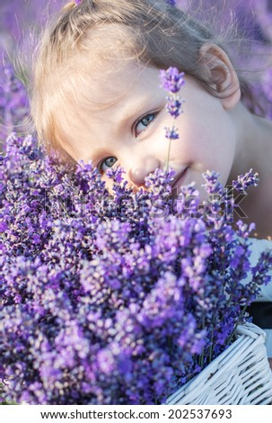 cute little girl smiling in a lavender field - stock photo