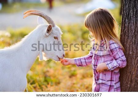 cute little kid feeding a goat at farm - stock photo