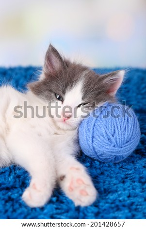 Cute little kitten lying on blue carpet, on light background - stock photo
