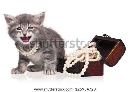 Cute little kitten with pearl necklaces isolated on white background - stock photo