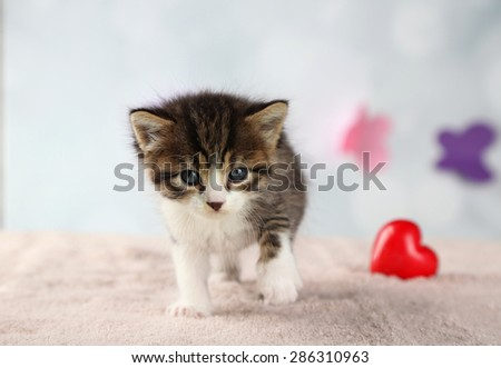 Cute little kitten with red heart on light background - stock photo