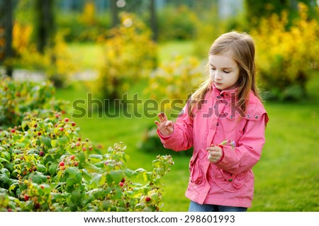 Cute little preschooler girl picking late raspberries on beautiful autumn day - stock photo