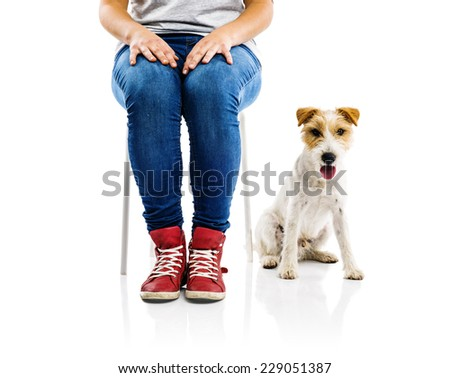Cute parson russell terrier dog sitting next to woman isolated on white background - stock photo