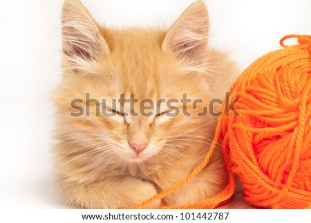 cute red kitten with woolen threads - stock photo