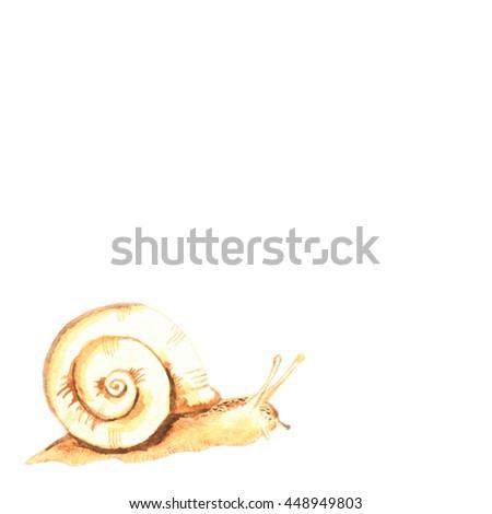 cute snail watercolor - stock photo