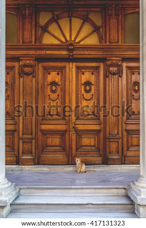 Cute street cat sitting in front of an old wooden ornate door - stock photo