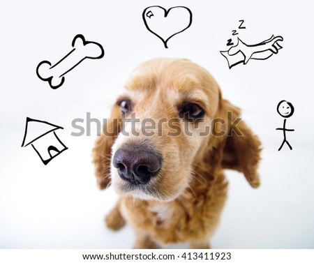 Cute thoughtful English Cocker Spaniel puppy in front of a white background with iconic style house, bone, heart, sleep and man sketch - stock photo