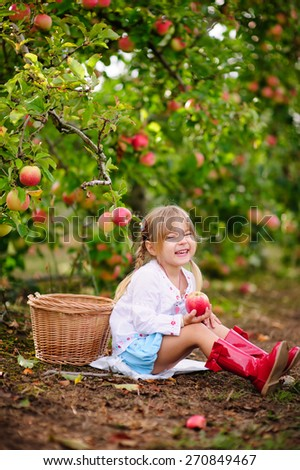 cute toddler girl picking fresh apples at sunny day on a organic farm - stock photo
