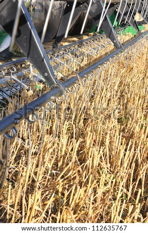 cutting part of a combine a field of wheat - stock photo