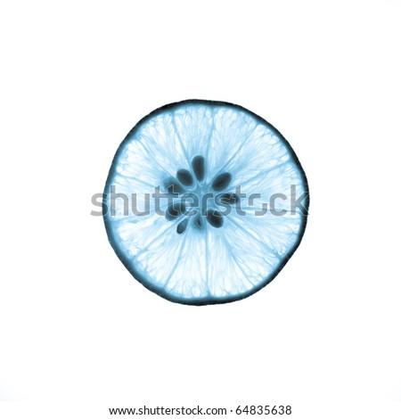 Cyanotype of x-ray lime - stock photo
