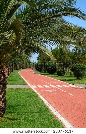 Cycle track in Batumi seaside park - stock photo