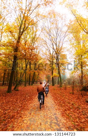 Cycling trough the woods in national park 'De hoge veluwe' in the Netherlands in autumn - stock photo