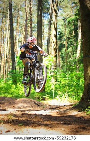 Cyclist rides through the forest - stock photo