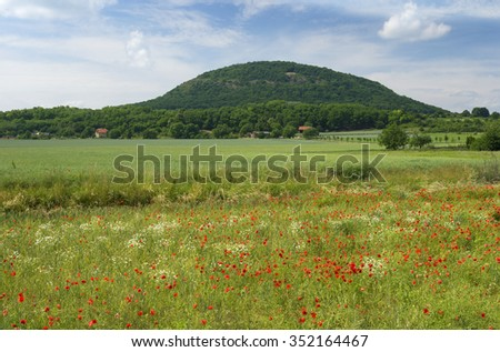 Czech countryside with Rip Mountain (Hora Rip), fields and meadows with wild red poppies - stock photo