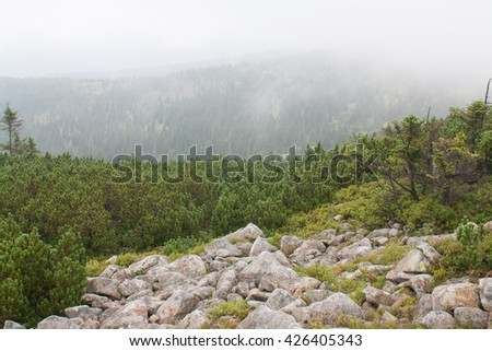 Czech mountains - stock photo
