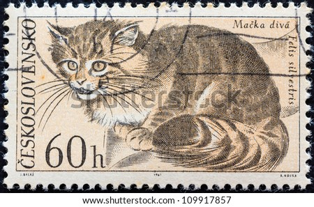 "CZECHOSLOVAKIA - CIRCA 1967: A stamp printed in Czechoslovakia from the ""Fauna of Tatra National Park"" issue shows a Wildcat (Felis silvestris), circa 1967. - stock photo"