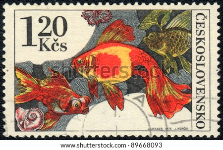 CZECHOSLOVAKIA - CIRCA 1975: A Stamp printed in CZECHOSLOVAKIA shows a   Goldfish,  circa 1975 - stock photo