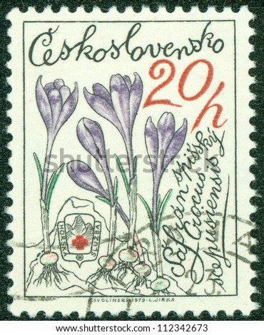 CZECHOSLOVAKIA - CIRCA 1979: A stamp printed in CZECHOSLOVAKIA shows Crocus, circa 1979 - stock photo