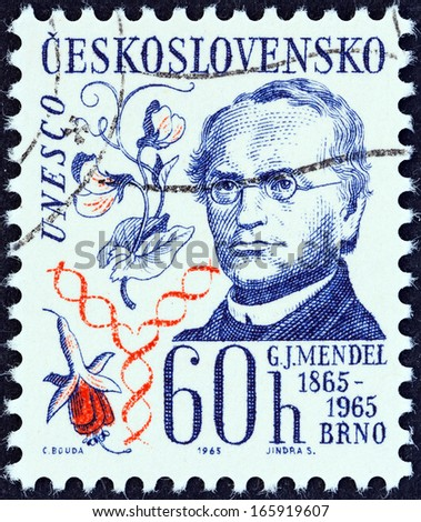 CZECHOSLOVAKIA - CIRCA 1965: A stamp printed in Czechoslovakia shows Gregor Johann Mendel (publication centenary in Brno of his study of heredity), circa 1965.  - stock photo