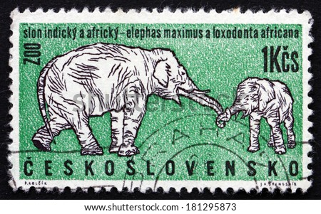 CZECHOSLOVAKIA - CIRCA 1962: a stamp printed in the Czechoslovakia shows African and Indian Elephants, Zoo Animal, circa 1962 - stock photo