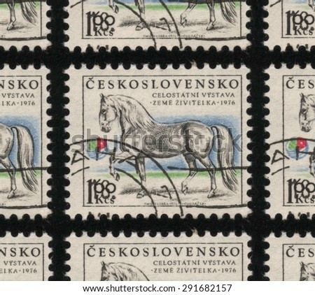 "CZECHOSLOVAKIA - CIRCA 1976: A used postage stamp printed in Czechoslovakia from the ""Domestic Animals - Bountiful Earth Agricultural Exhibition, Ceske Budejovice"" issue, showing a white horse.  - stock photo"