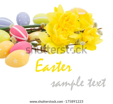 daffodil flower  with catkins and esater eggs  isolated on white - stock photo