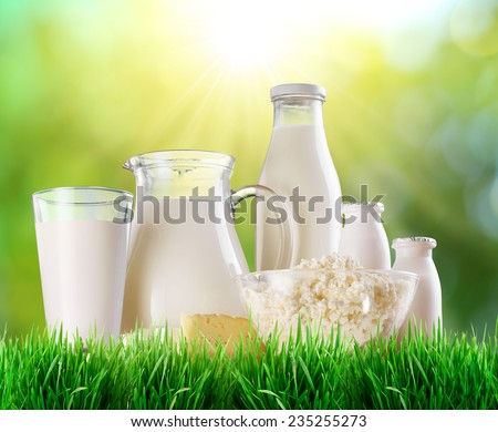 Dairy products on the grass. Blurred sunny background. - stock photo