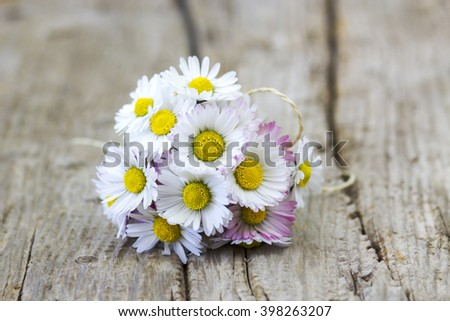 daisies on wooden background - stock photo