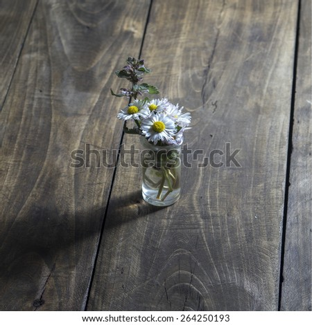 daisy flower in glass jar on wooden background - stock photo