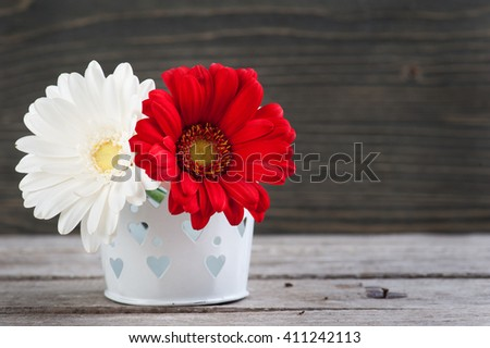 Daisy flowers in vase on wooden table. Spring, easter or gardening concept - stock photo
