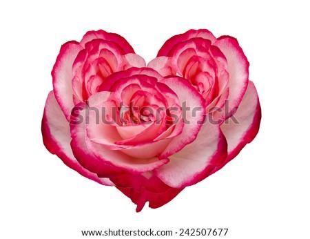 Damask rose heart frame isolated on white background - stock photo