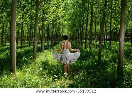 Dancing between poplars II - stock photo