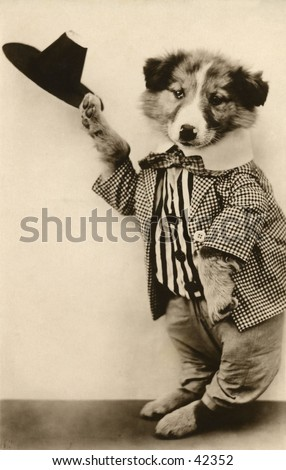 Dancing Dog Act - a humorous turn-of-the-century, vintage photograph. - stock photo