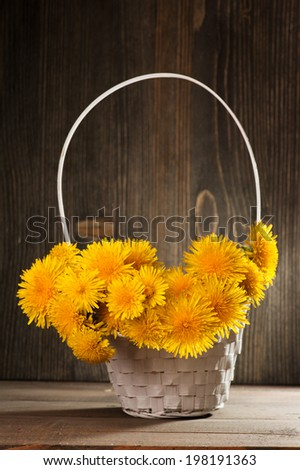 Dandelions in a white basket on dark wooden background  - stock photo