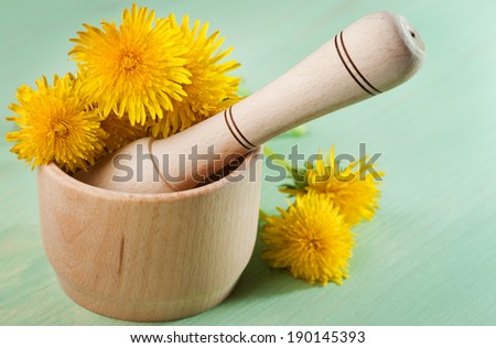 Dandelions in a wooden mortar with pestle on mint wooden table  - stock photo