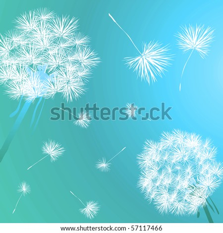 Dandelions in the blue - stock photo