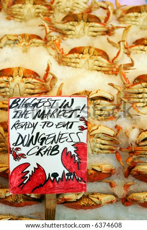 Dangeness crab in famous Pike Market, Seattle - stock photo