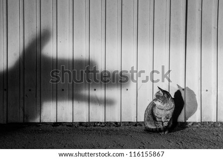 Danger waits for me everywhere - stock photo