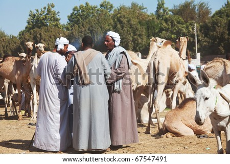 DARAW, EGYPT - DECEMBER 29: Arab people are bargaining at weekly camel and livestock market on December 29, 2009 at Daraw town near the Aswan. - stock photo