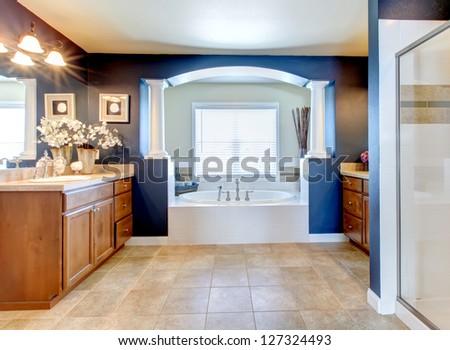 Dark blue classic elegant bathroom interior with columns. - stock photo