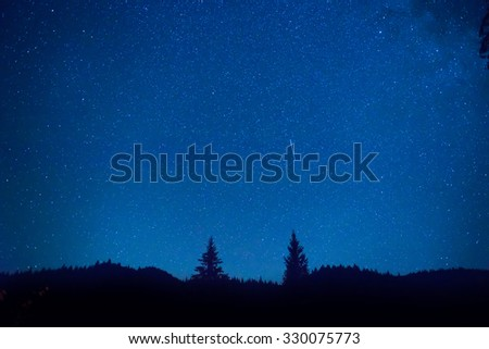 Dark blue night sky above mystery forest with pine trees - stock photo